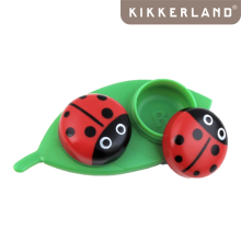 Lady Bug case